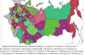 Основы политического строя РФ